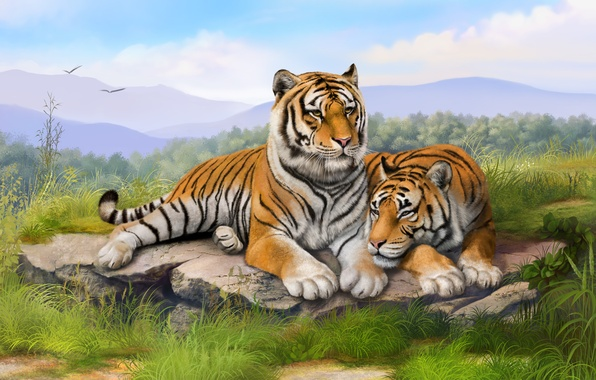 Picture grass, stones, painting, tigers, art, lie, olggah