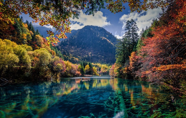 Picture autumn, trees, mountains, nature, lake, river