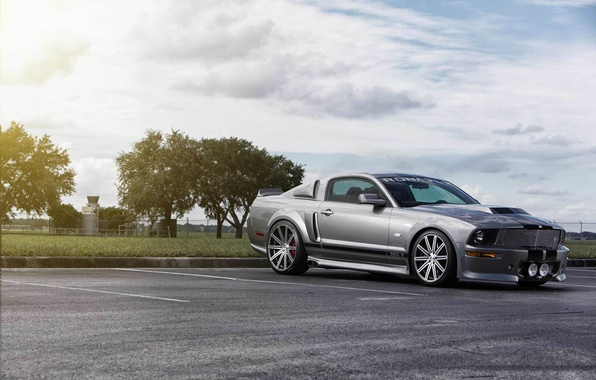 Picture Mustang, Ford, muscle car, silvery, kit, 550R