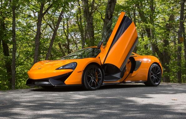 Picture McLaren, supercar, McLaren, 570S
