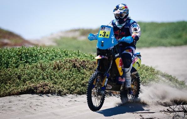 Picture sand, Sport, Race, Motorcycle, Racer, Moto, Red Bull, Rally, Dakar