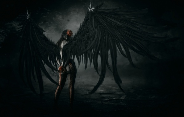 Picture girl, pose, wings, art, tights, fallen angel