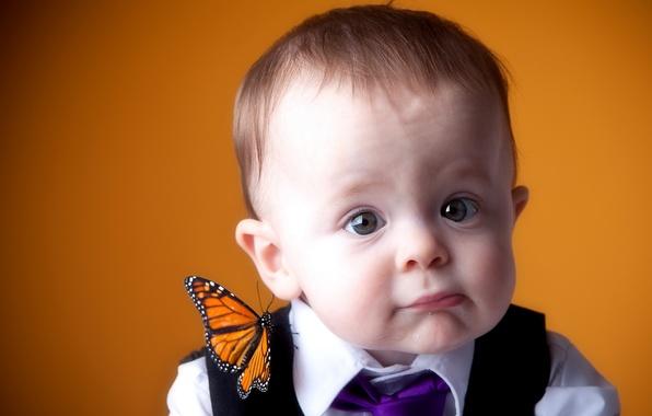 Picture mood, butterfly, portrait, boy
