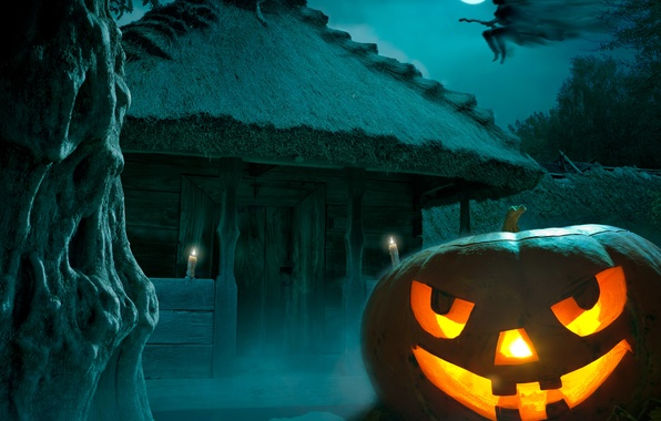 Picture night, fear, Halloween, pumpkin, moon, Halloween, witch, the full moon, night, holiday, pumpkin, Happy, witch, …
