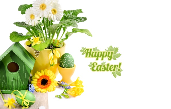 Picture photo, Easter, Eggs, Holiday, Gerbera