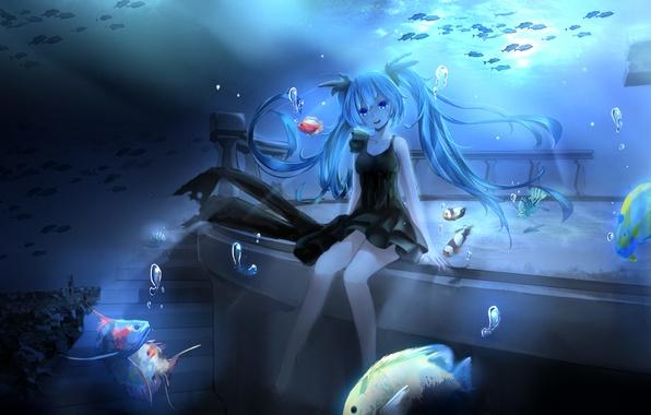 Picture girl, fish, bubbles, anime, art, ladder, vocaloid, hatsune miku, under water, magicians