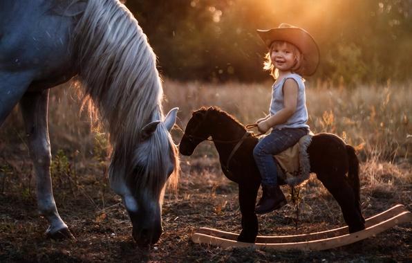 Picture horse, horse, hat, boy, rider, rocking, horse