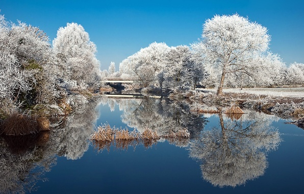 Picture winter, frost, trees, nature, lake, pond, Park, reflection, Landscape