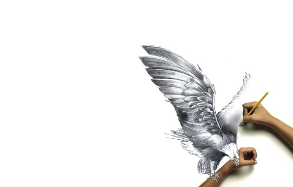 Wallpaper Hands Figure Pencil Bird Paper Reality Claws - Reality with pencil and paper