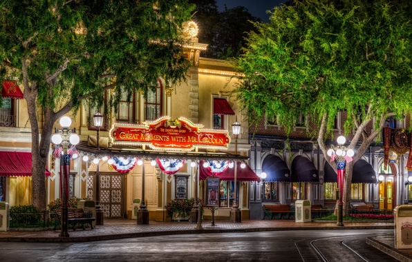 Picture trees, night, the city, photo, street, HDR, home, lights, CA, USA, Disneyland, Anaheim