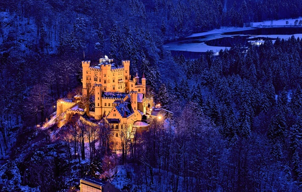 Picture winter, forest, trees, castle, Germany, Bayern, Germany, Bavaria, Castle Hohenschwangau, Hohenschwangau Castle