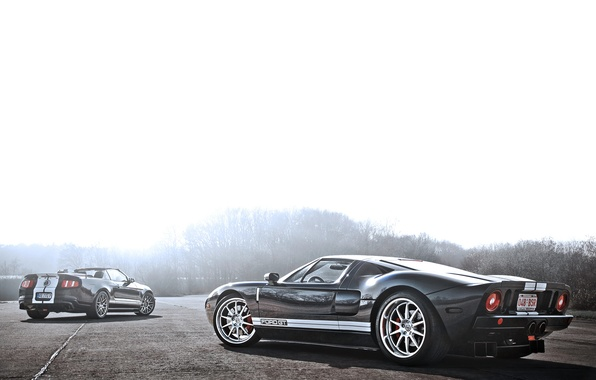 Picture Mustang, Ford, Shelby, GT500, Mustang, silver, convertible, muscle car, Ford, Blik, Shelby, rear, Muscle car, …