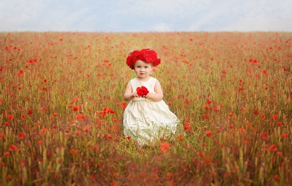 Picture field, flowers, Maki, girl, wreath