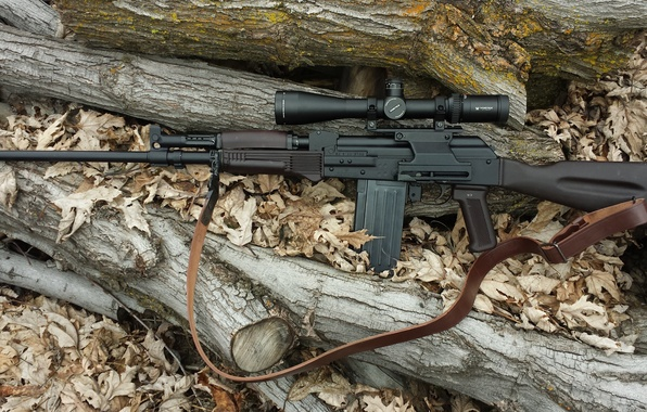 Picture weapons, optics, carabiner, self-loading, smoothbore, Vepr-12
