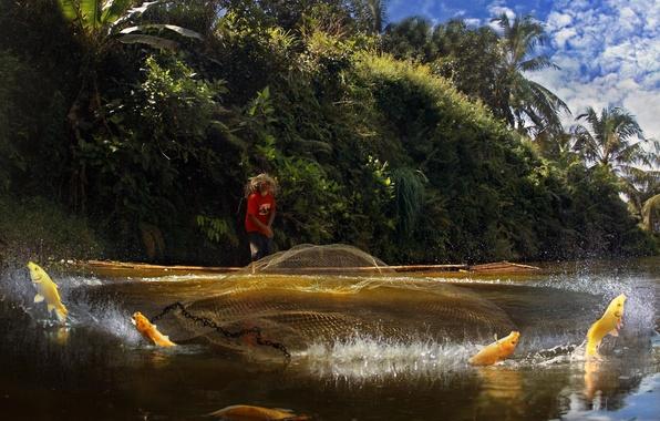 Picture network, splash, fish, fisherman, casting