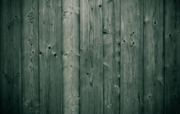 Picture tree, Board, texture, wood, texture, 1920x1080, board