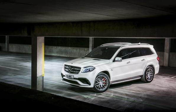 Picture Mercedes-Benz, Mercedes, AMG, X166, GLS-Class