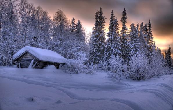 Picture winter, forest, snow, trees, hut, the snow, Finland, Finland, Lapland, Lapland, Ylläs, Äkäslompolo, Akaslompolo, Ylläs