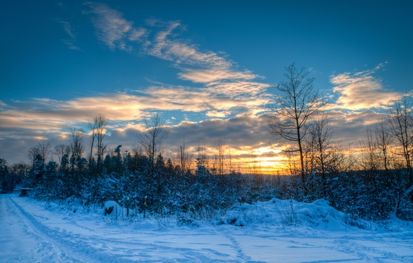 Picture winter, road, the sky, clouds, snow, trees, sunset, nature, path