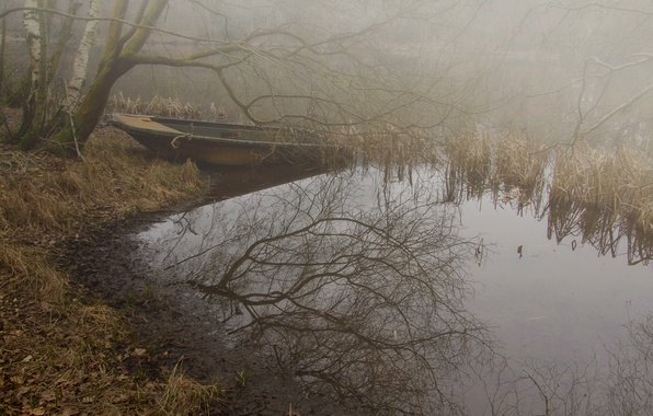 Picture autumn, forest, fog, lake, boat