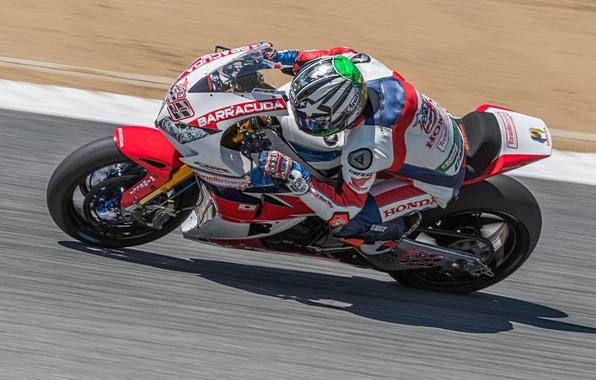 Picture motorcycle, Honda, Motorsport, Nicky Hayden, racer