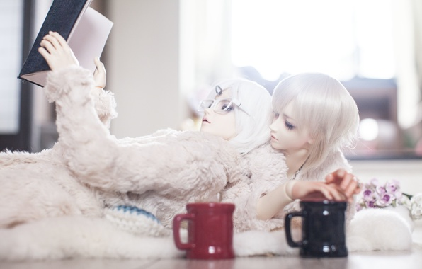 Picture flowers, doll, glasses, Cup, Cup, book, guys, white hair, doll, BJD
