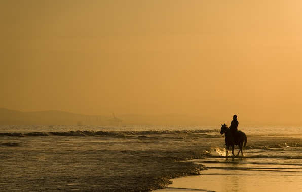 Picture sand, sea, animals, water, people, the ocean, horse, shore, landscapes, horse, people, horses, morning, horse, …