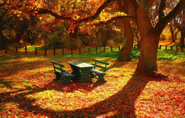 Picture leaves, trees, table, the fence, Autumn, benches