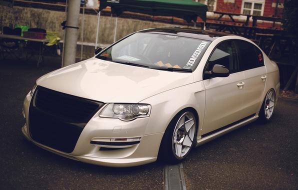 Picture white, Volkswagen, Passat B6