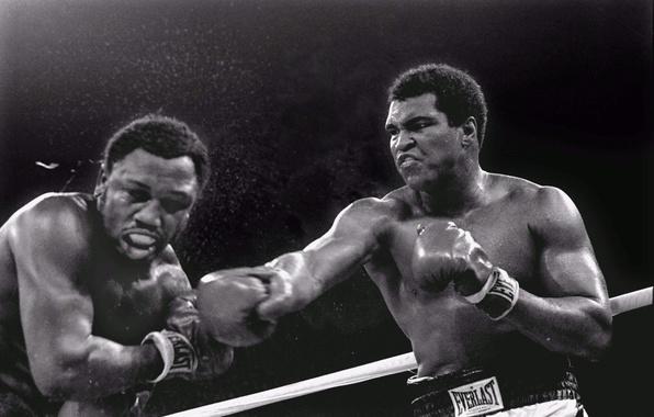 Picture blow, Trilla in Manila, Muhammad Ali, 1975, 3 battle, Joe Frazier