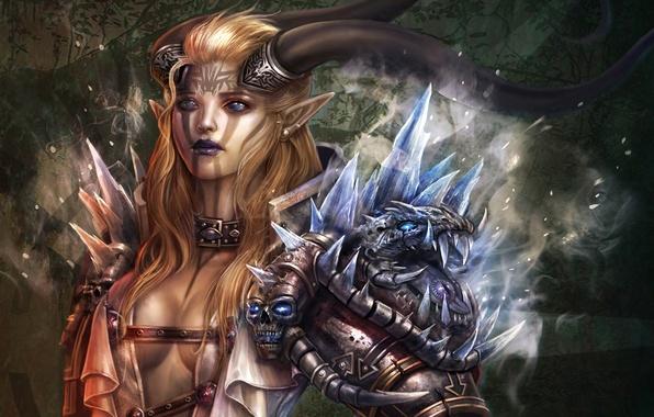 Picture glass, armor, women, warrior, fantasy art