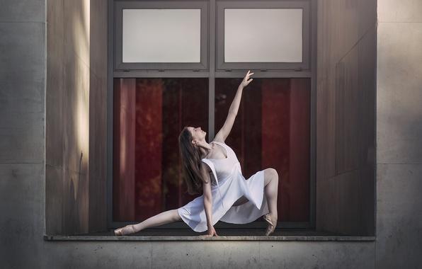Picture girl, pose, window, ballerina