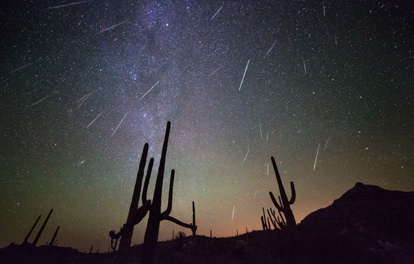 Picture space, stars, night, cacti
