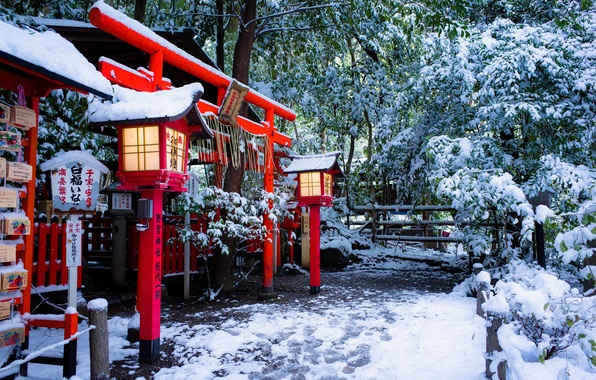 Picture winter, snow, Japan, lights, temple, Japan, the gates, Kyoto, Kyoto, Torii, Torii gate, Nonomiya Shrine, ...