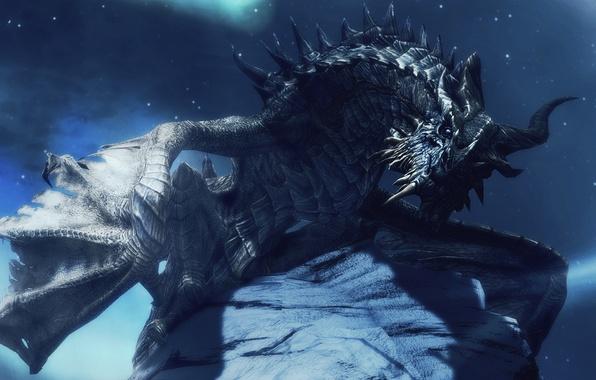 Picture look, stars, night, dragon, wings, horns, The Elder Scrolls V Skyrim