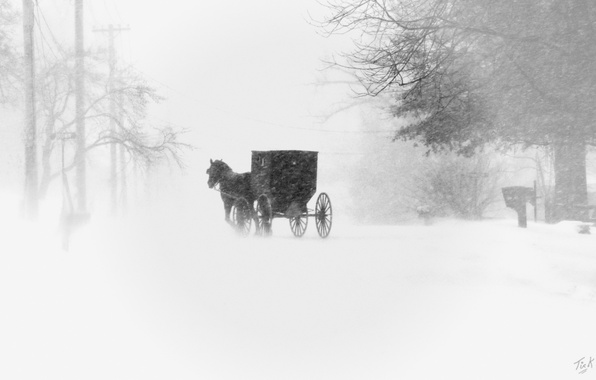 Picture snow, the city, coach, Blizzard