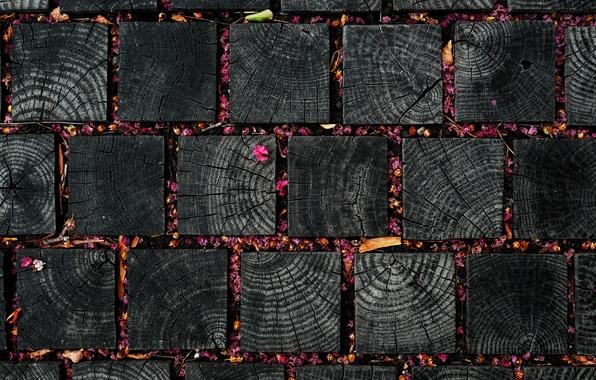 Picture texture, squares, petals, leaves, flowers, wood