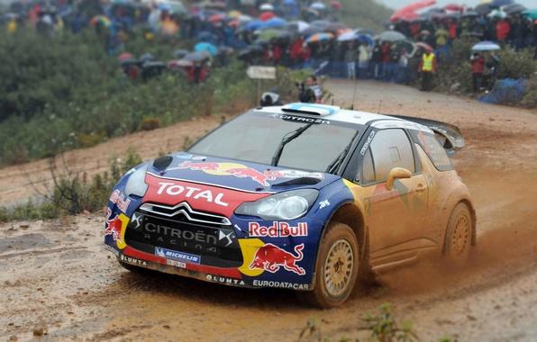 Picture Auto, Sport, Machine, People, Rain, Race, Citroen, The hood, Dirt, Citroen, Red Bull, DS3, WRC, …