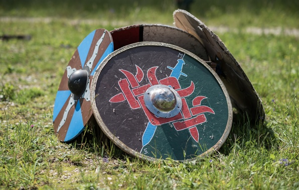 Picture grass, shields, Vikings