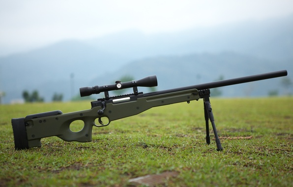 Picture grass, weapons, earth, optics, rifle, sniper, awp, bipod, awm, Arctic Warfare Magnum