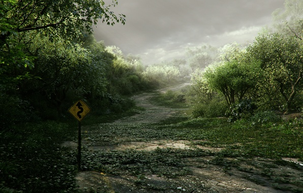 Picture road, thickets, sign, art, index