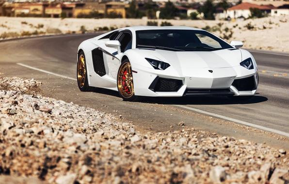 Picture Lamborghini, Power, Front, White, LP700-4, Aventador, Road, Supercar, Wheels, Desert, B-Forged