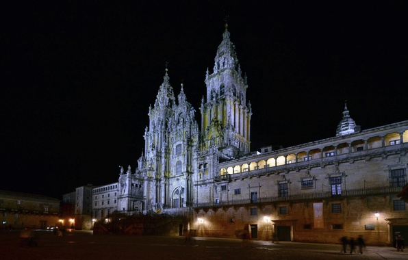 Picture night, lights, area, Cathedral, Spain