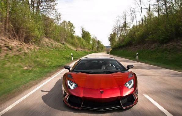 Picture forest, movement, Lamborghini aventador Mansory, lamborghini aventador mansory