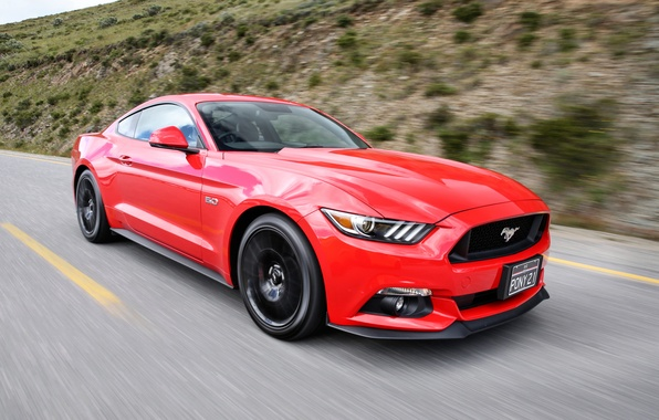 Picture Mustang, Ford, GT500, Mustang, Ford