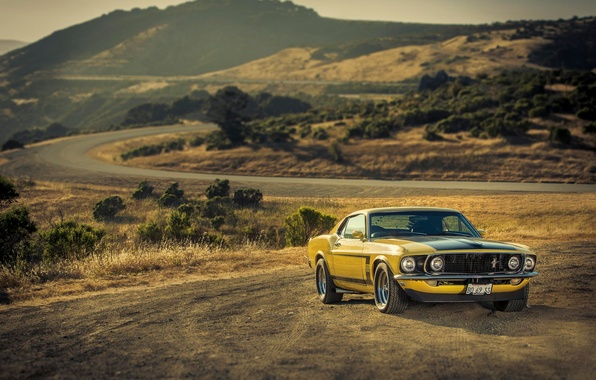 Picture yellow, Mustang, Ford, Mustang, 1969, muscle car, Ford, yellow, muscle car, 302, Boss, '69