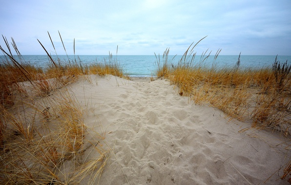 Picture sand, sea, the sky, grass, clouds, shore