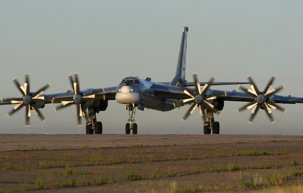 Picture bear, bomber, bear, Tupolev, Tu-95MS, Tu-95MS
