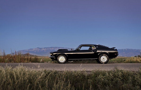 Picture black, ford mustang, muscle car, boss, rechange, lunchbox photoworks