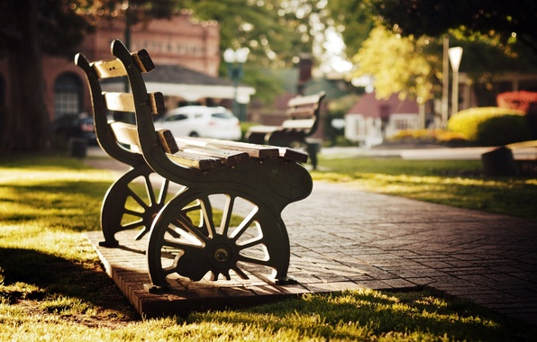 Picture greens, grass, the sun, trees, bench, Park, background, tree, stay, widescreen, Wallpaper, mood, blur, wheel, …